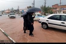 میانگین بارندگی سال زراعی جاری استان کرمانشاه به 309 میلی متر رسید