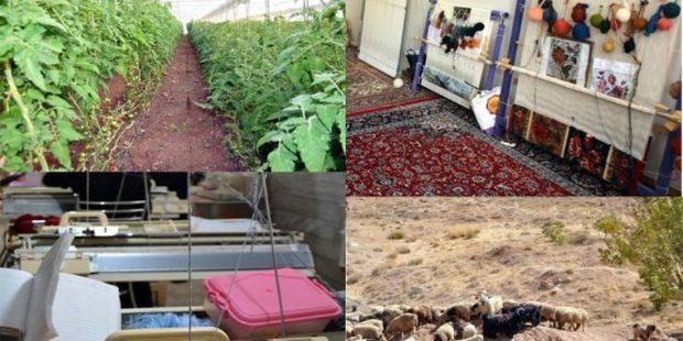 توسعه اشتغال روستایی در اولویت های استان بوشهر قرار گرفت