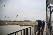 باران و وزش باد در هفته آینده برای خوزستان پیش بینی می شود