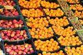 ۷ هزار تن سیب و پرتقال برای مصرف استان تهران در نوروز ذخیره شد