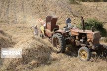 کشت پاییزه در ۳۴ هزار هکتار مزارع شادگان آغازشد