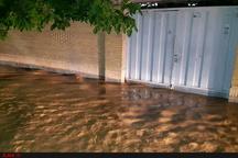۳۵ خانوار گرفتار سیل و آبگرفتگی در خوزستان  توزیع اقلام امدادی بین حادثه دیدگان
