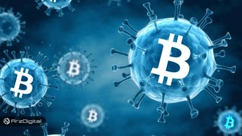 آیا صعود بیت کوین مشابه گسترش یک بیماری ویروسی واگیردار است؟