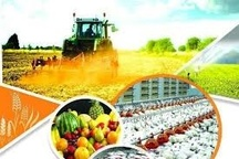 افتتاح و بهره برداری بیش از ۹۵ پروژه کشاورزی با اعتبار بالغ بر یک هزار میلیارد ریال