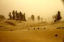 سرعت وزش باد در شمال سیستان و بلوچستان به 90 کیلومتر بر ساعت رسید