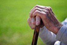14 درصد سالمندان یزد، زیر پوشش کمیته امداد هستند