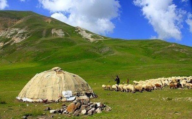 شیروان پایلوت استانی اجرای طرح توانمندسازی عشایر شد