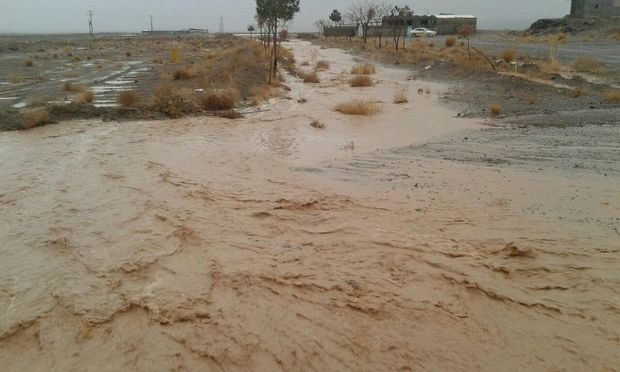 خسارت سیلاب در خراسان جنوبی 41 درصد کاهش یافت