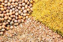 1400 تن کنجاله سویا و ذرت دانه ای در آذربایجان غربی توزیع شد
