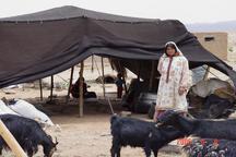 دایر شدن پنج شرکت تعاونی و صندوق اعتبار خرد زنان عشایر در استان یزد