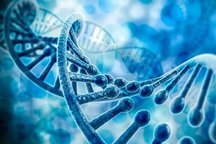 بانک ژنتیک هویت مجرمان را فاش میکند