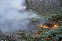 پارک ملی گلستان دچار آتش سوزی شد
