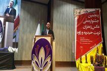 رییس فراکسیون زعفران مجلس از ماشینی شدن صنعت زعفران خبر داد