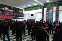 شور حسینی دانشآموزان مازندران به یاد نوجوان شهید کربلا