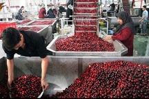 آمادگی ایجاد کارخانجات فرآوری کشاورزی در تهران وجود دارد