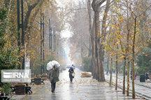 پیشبینی بارش پراکنده باران در ارتفاعات تهران