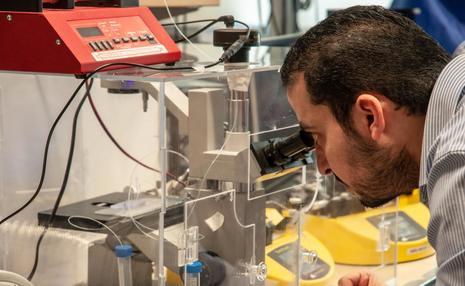 رویای دانشمندان، به واقعیت نزدیک شد!/ ساخت بافت های اندامی قابل تزریق