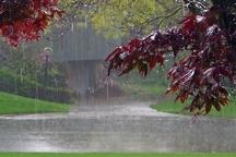 ثبت متوسط 380 میلی متر بارش باران در استان ایلام