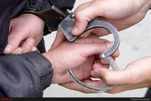 دستگیری سارقان تجهیزات برقرسانی در ریگان