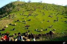 آماده باش 12 اکیپ یگان حفاظت منابع طبیعی زنجان