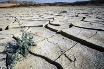 خشکسالی سبب کاهش تولیدات کشاورزی سیستان شد