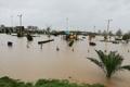 طغیان رودخانه قره سو بخشی از پارک الغدیر گنبد را زیر آب برد