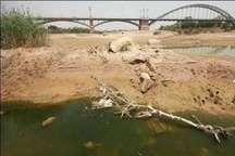 حقابه هورالعظیم و نخیلات خوزستان با وجود خشکسالی تامین شد