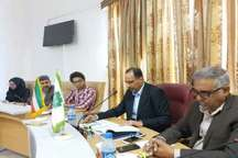 96 درصد سهمیه مالیاتی سه ماهه نخست امسال استان وصول شده است