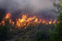 هشدار نسبت به بروز مجدد آتش سوزی در جنگلهای ارسباران