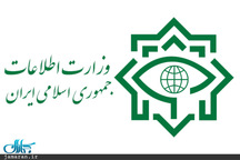 وزارت اطلاعات برخی عناصر ناآرامیهای اخیر را شناسایی و بازداشت کرد