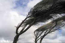 وزش باد شدید مناطق مختلف زنجان را فرا می گیرد