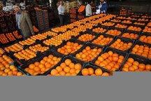 میوه شب عید در شیروان تامین شد