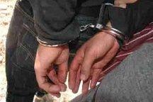 سردسته باند ساقان در کرج دستگیر شد