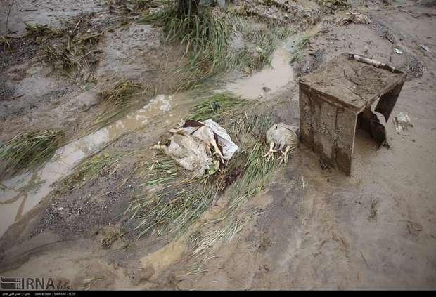 سیلزدگان مازنی بهداشت فردی را رعایت کنند