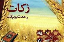 بیش از ۵۰ میلیارد ریال زکات در سیستان و بلوچستان جمعآوری شد