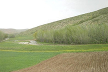 1340 هکتار از اراضی ملی استان مرکزی رفع تصرف شد