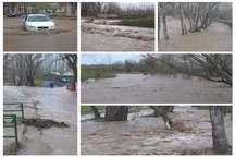 سیلاب در مناطقی از شهرستان نیر خسارت ببار آورد