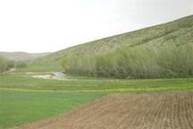 264 هکتار اراضی ملی استان مرکزی رفع تصرف شد