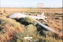 تأیید خبر سقوط پهپاد جاسوسی آمریکا در عراق