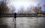در شهر یزد چند شبانه روز باران میبارد
