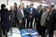 استفاده از بذرهای اصلاح شده برنج موجب افزایش بهره وری است