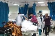 افزایش مرگ و میر ایرانی ها در سفر ناشی از چیست؟