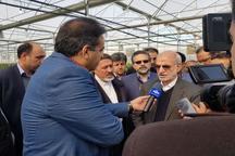 استاندار تهران: استفاده از سامانه نوین آبیاری راهکار اصلی مقابله با کم آبی است
