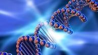 امکان ساخت رایانه با استفاده از DNA!