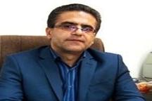میانگین درآمد هر هکتار زمین دیم کشاورزی کردستان، هفت میلیون ریال است