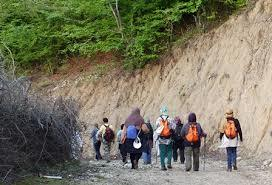 گروههای کوهپیمایی و گلگشت ساماندهی میشوند