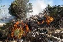 حریق جنگل های بلوط الوار گرمسیری مهار شده است  اعزام دو بالگرد هلال احمر به منطقه