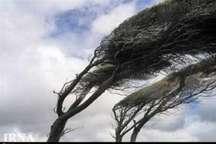 وزش باد و گرد و خاک برای استان تهران پیش بینی می شود
