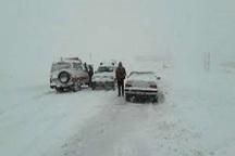 بارش برف و کولاک موجب کندی تردد در  گردنه مروارید و حلوایی شد