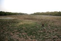 مشکلات محیط زیست ناشی از تصمیمات نادرست گذشته است